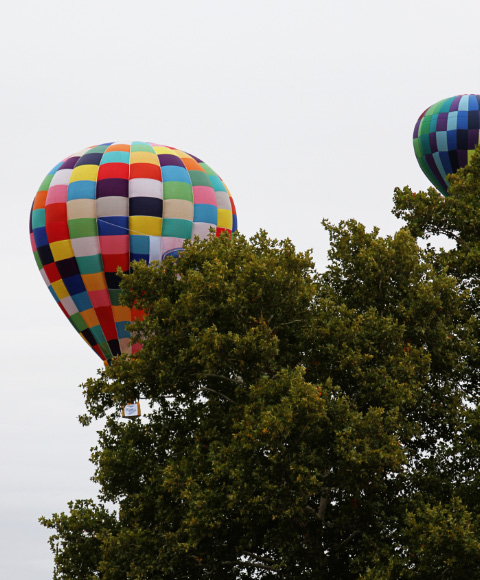Forest Park Balloon Race